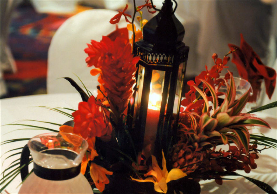 Dolphin Beach Resort - Centerpiece