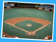 Baseball - St Petersburg Tropicana Field